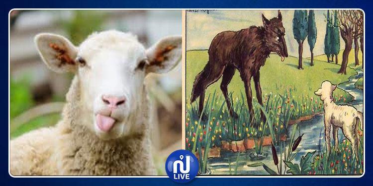 Vaches à lait et moutons de Panurge…