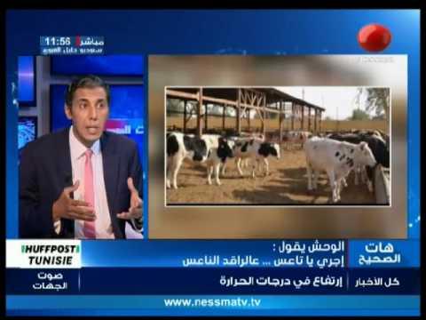 el wa7ch igoul du mercredi  19 juillet 2017