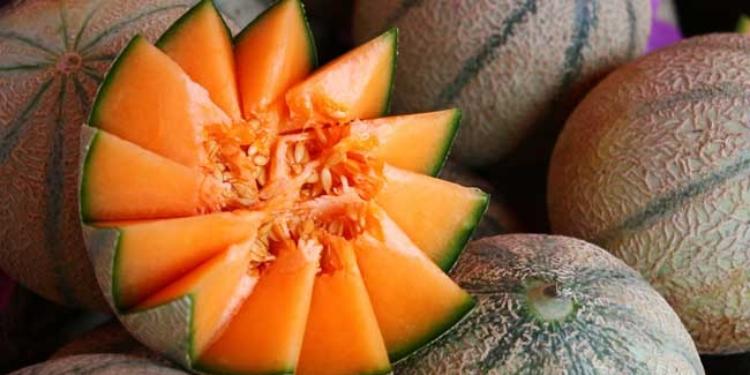 Les bienfaits du melon / cantaloupe