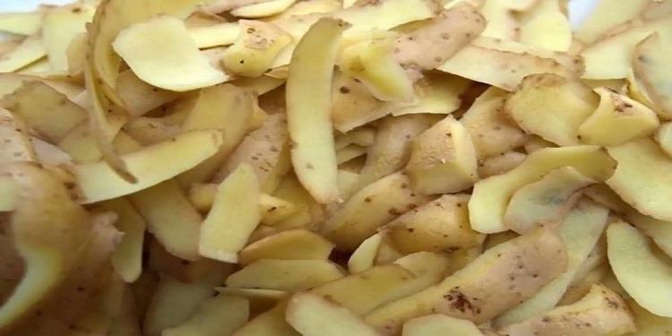 لن ترمي قشور البطاطا إذا عرفت طرق إستخدامها!