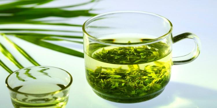 Les propriétés amincissantes du thé vert