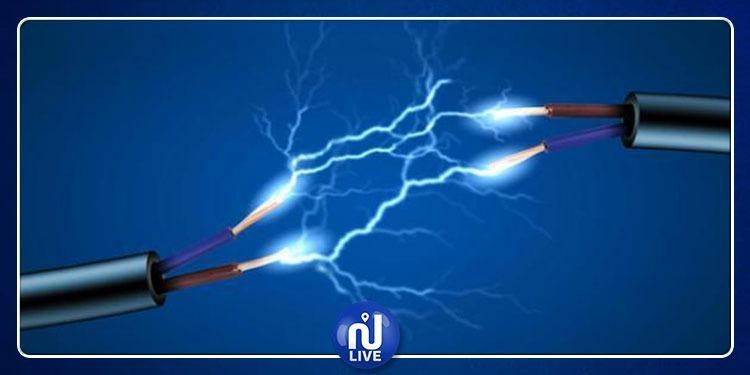 العلماء يكتشفون بكتيريا تولّد الكهرباء