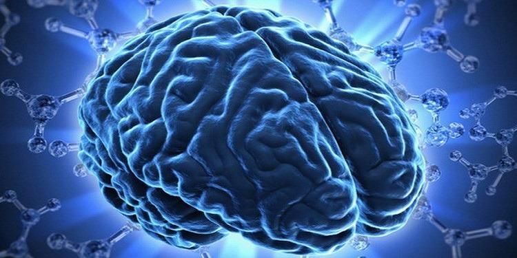 منها قلّة شرب الماء...5 عادات تُتلف خلايا الدماغ!