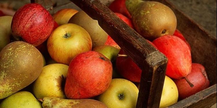 3 fruits santé pour passer l'automne en forme