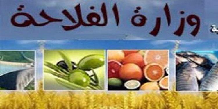 عجز بقيمة 295 مليون دينار في الميزان التجاري للمواد الغذائية خلال الشهرين الأولين من سنة 2017