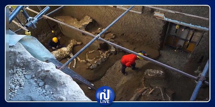 العثور على رفات حصان عمرها حوالي 2000 سنة في إيطاليا (فيديو)