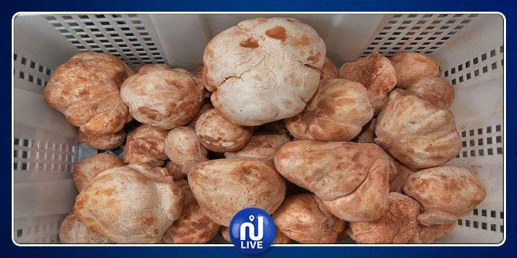 Truffes tunisiennes: des exportations à hauteur de 10 MD