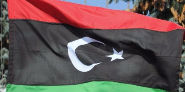 """رئيس البرلمان الاوروبي """"يستبعد القيام بعمل عسكري في ليبيا في الوقت الحالي"""""""