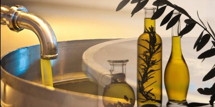 Huile d'olive : Hausse de 160% de la production nationale, prévue cette saison