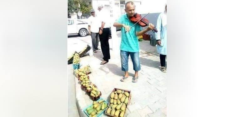 Vendeur de figues de Barbarie et violoniste à ses heures