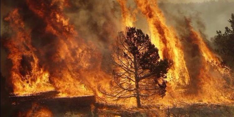 Canada : un gigantesque incendie sème la panique dans toute une ville
