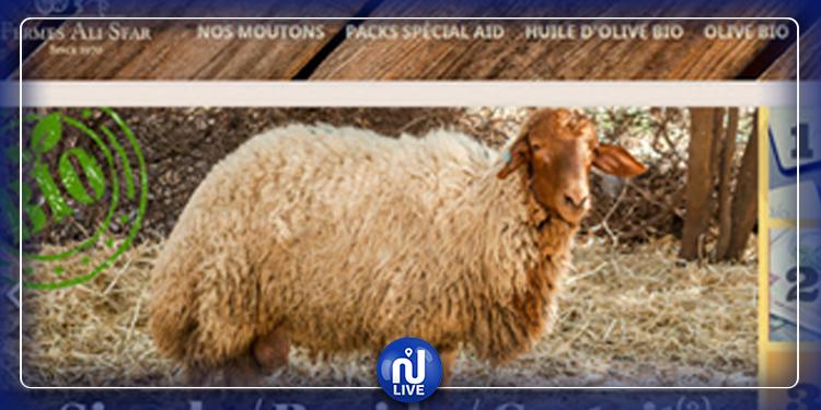 Moi, j'achète mon mouton en ligne !