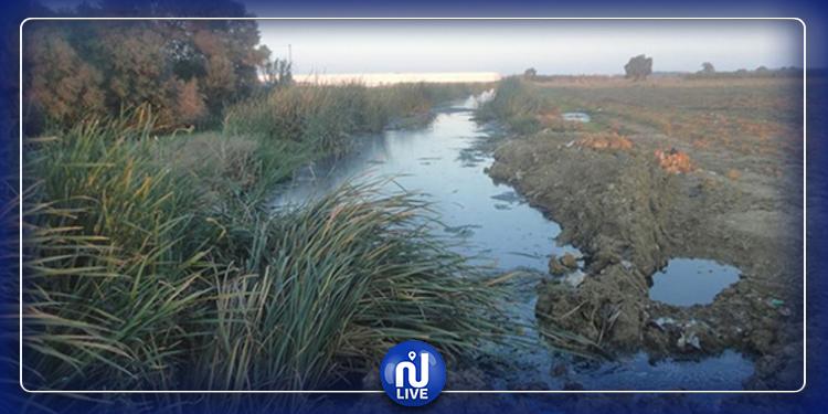 Pollution : Les côtes nord entre Tazarka et Haouari sous la menace