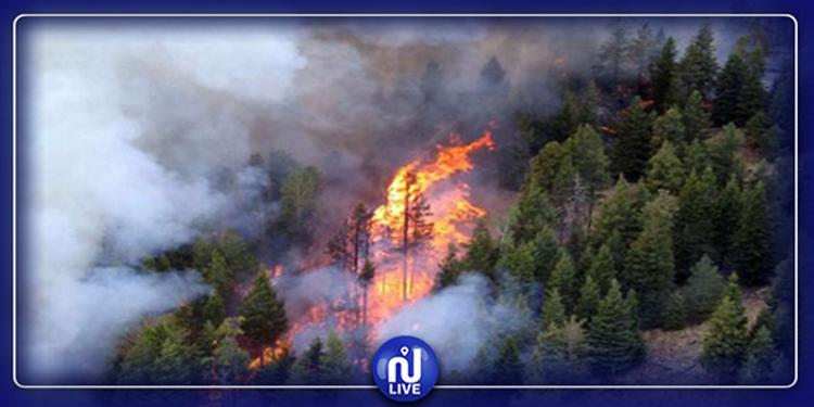 Ghar El Meleh : Plus de 10 heures pour maîtriser un incendie