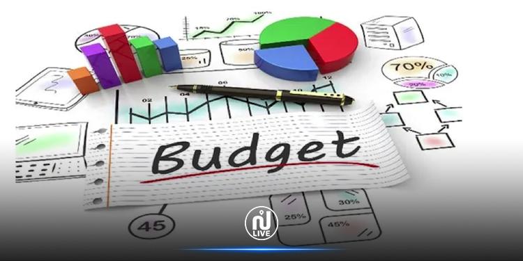 Répartition du budget du ministère des affaires culturelles pour l'année 2020
