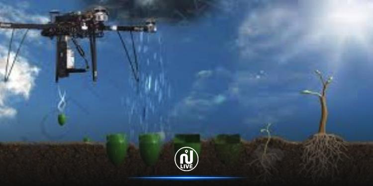 Madagascar : Des drones planteurs d'arbres pour restaurer la flore