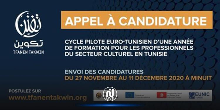 « Tfanen Tunisie Creative » lance l'appel à candidature pour « Tfanen Takwin »