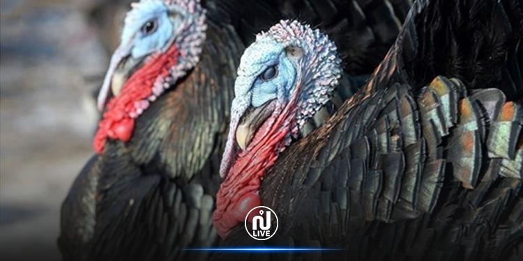 Covid : Une nouvelle vague après Thanksgiving aux Etats Unis ?