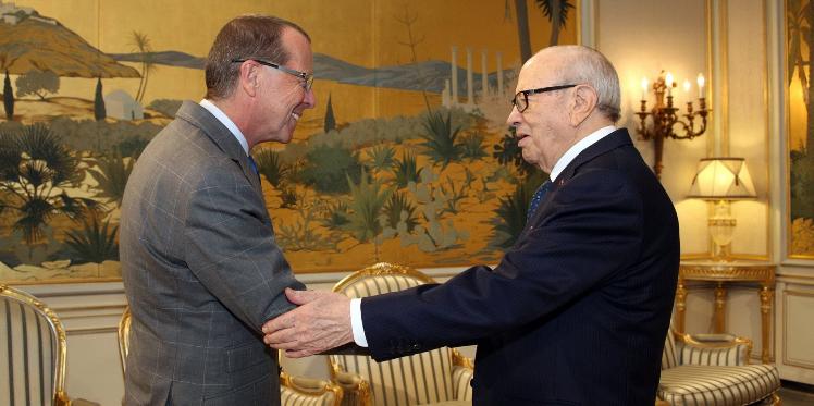 السبسي يلتقي رئيس بعثة الأمم المتحدة للدعم في ليبيا