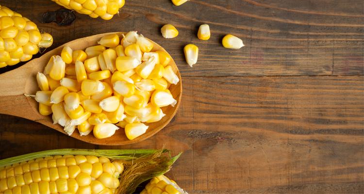 Régime sans gluten : Se régaler sans gluten, c'est possible