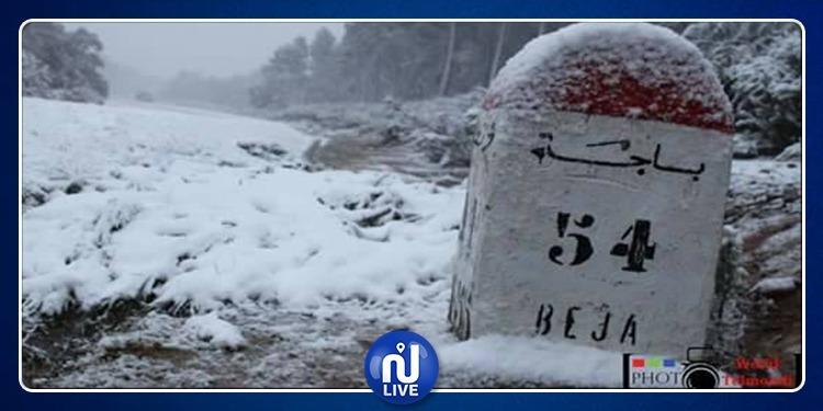 باجة: تهاطل الثلوج بسمك 10 سنتمترات بجبل القراعة وبدجبة وتبرسق