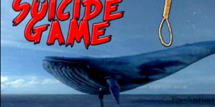 سيدي بوزيد-منزل بوزيان: حملة تحسيسية للتعريف بمخاطر لعبة 'الحوت الأزرق'