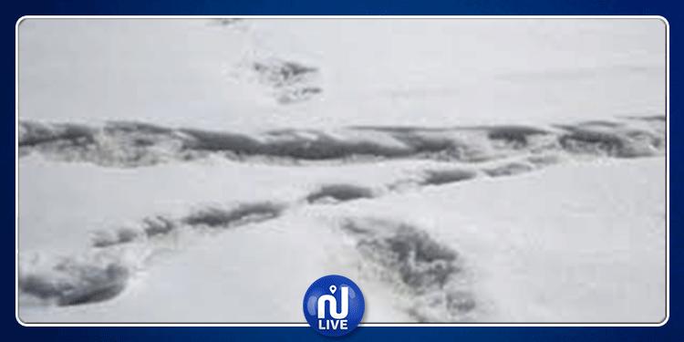 الهند: الجيش يعلن العثور على آثار لأقدام 'رجل الثلج' الأسطوري (صور)