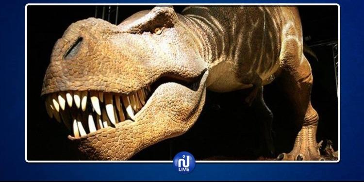 ''ديناصوران'' للبيع في باريس (فيديو)