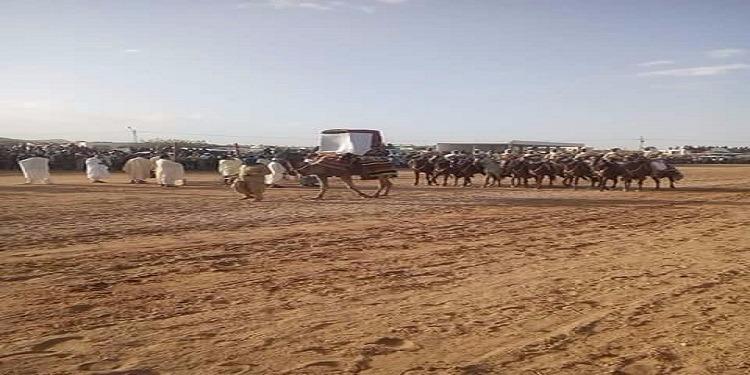الرقاب: عروض تقليدية متنوعة في مهرجان سعد بن عروة بالريحانة