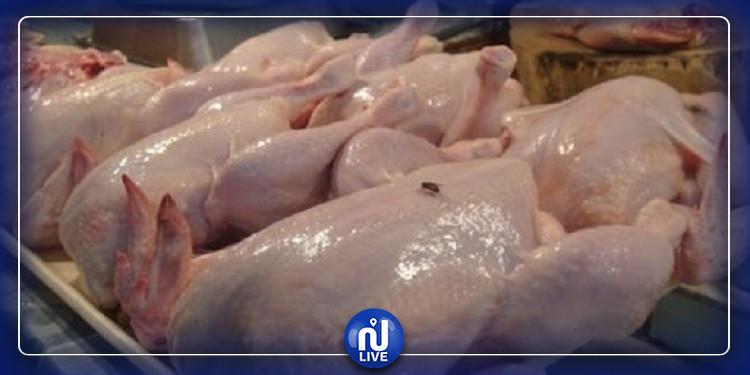 بنزرت :حجز حوالي 400 طير دجاج بمدجنة عشوائية