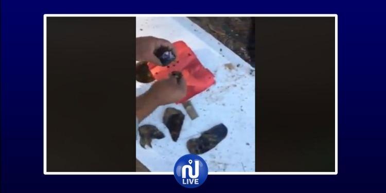 فظيع وصادم: شعوذة وسحر و'حْرُوزات' في مقبرة بأريانة (فيديو)