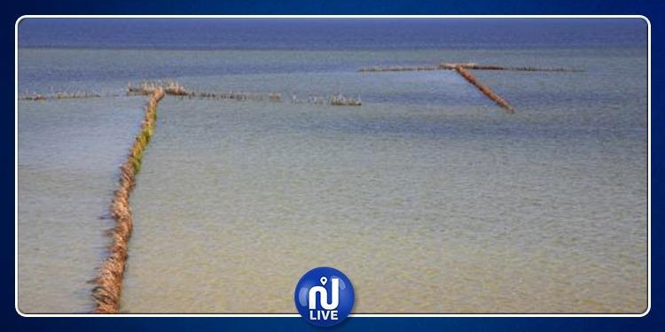 تونس تسعى لإدراج 'صيد الشرفية بقرقنة' ضمن تراث اليونسكو