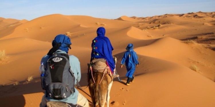 محمد علي التومي: ''يجب الترويج للسياحة الصحراوية والتعريف بها''