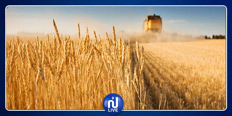 منوبة: استئناف نشاط قطار الحبوب بعد توقفه منذ الثورة