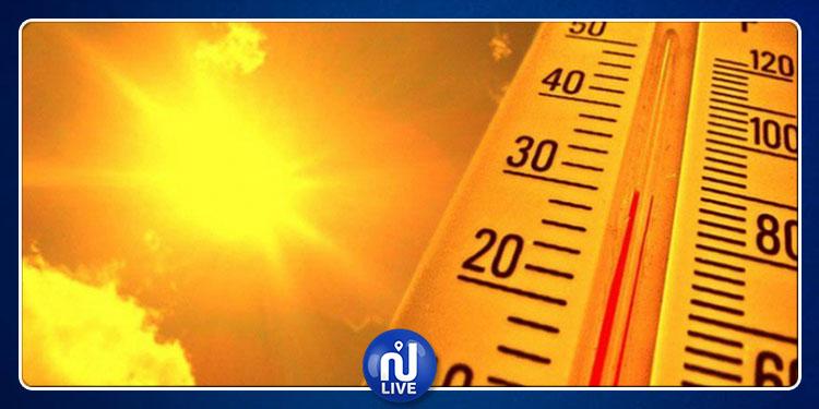 الرصد الجوي: درجات الحرارة تصل إلى 37 درجة