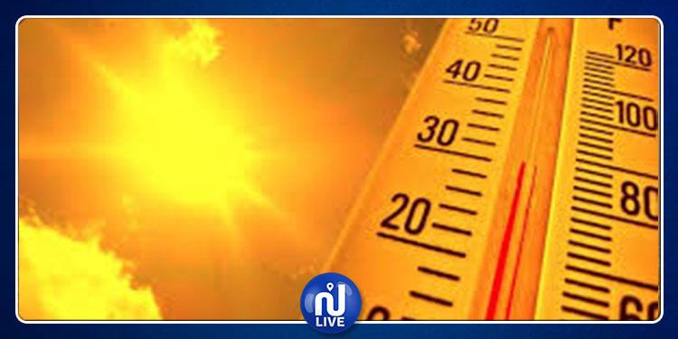 طقس اليوم: الحرارة تصل إلى 44 درجة مع ظهور الشهيلي