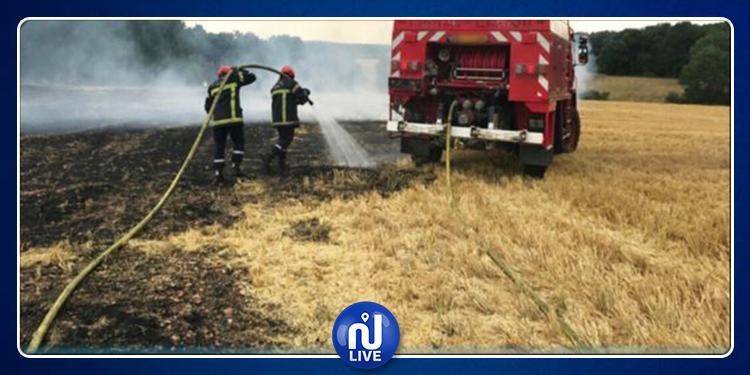 الحماية المدنية : إطفاء 106 حريقا في يوم واحد