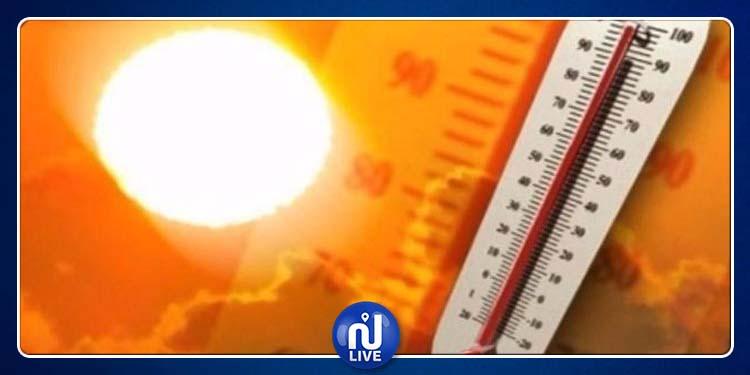 درجة الحرارة تصل إلى 44 درجة مع ظهور الشهيلي