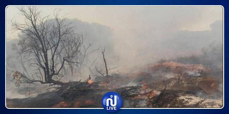 روّاد : إكتشاف ممرات خفية مؤدية إلى غابة سيدي عمر