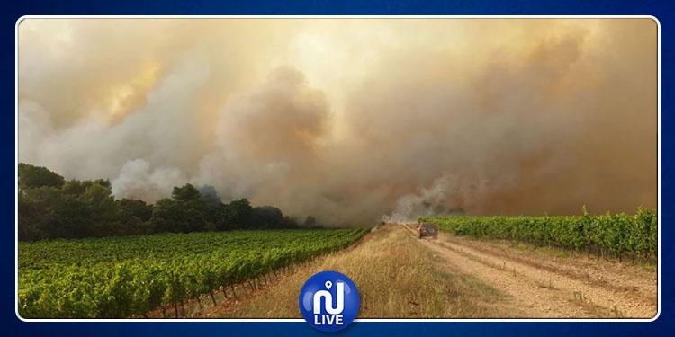 الحرائق تأتي على 480 هكتارا من الغابات الفرنسية( فيديو)