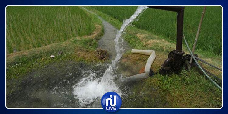 الكاف: خضر وغلال تسقى بمياه الصرف الصحي!