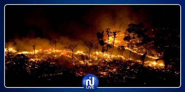 Bolsonaro accuse les ONG d'avoir incendié la forêt amazonienne