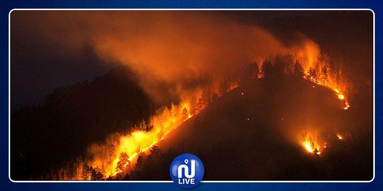 بنزرت : حريق في مرتفعات الركب