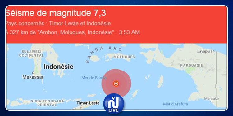Violent séisme en Indonésie, ressenti jusqu'en Australie