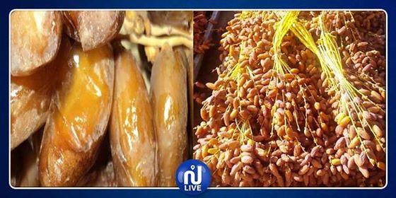 Un grand marché de dattes à Kébili pour valoriser le label tunisien
