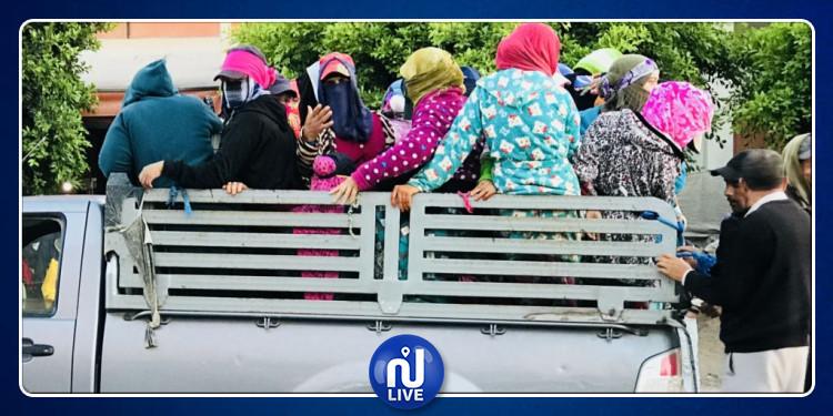 إشكاليات قطاع النقل في تونس على طاولة مجلس وزاري