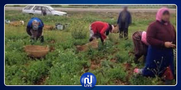 3 مشاريع ومبادرات جديدة في تونس لفائدة المرأة الريفية
