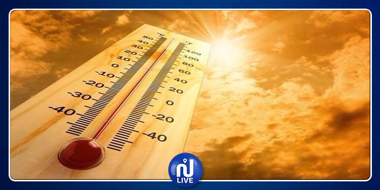 الحرارة تصل إلى 39 درجة مع هبوب الشهيلي