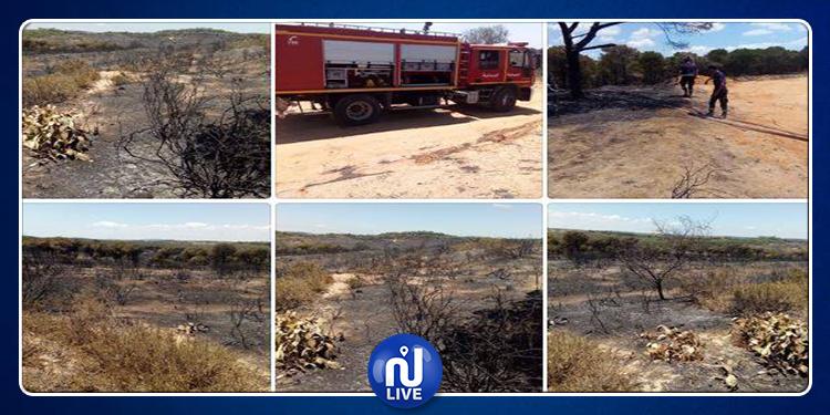 حريق غابة البندق اندلع بفعل فاعل