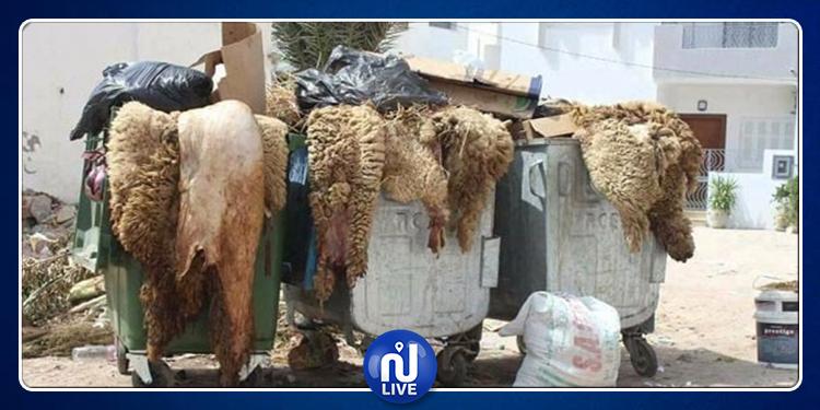 في عيد الأضحى.. توصيات وزارة البيئة للتونسيين